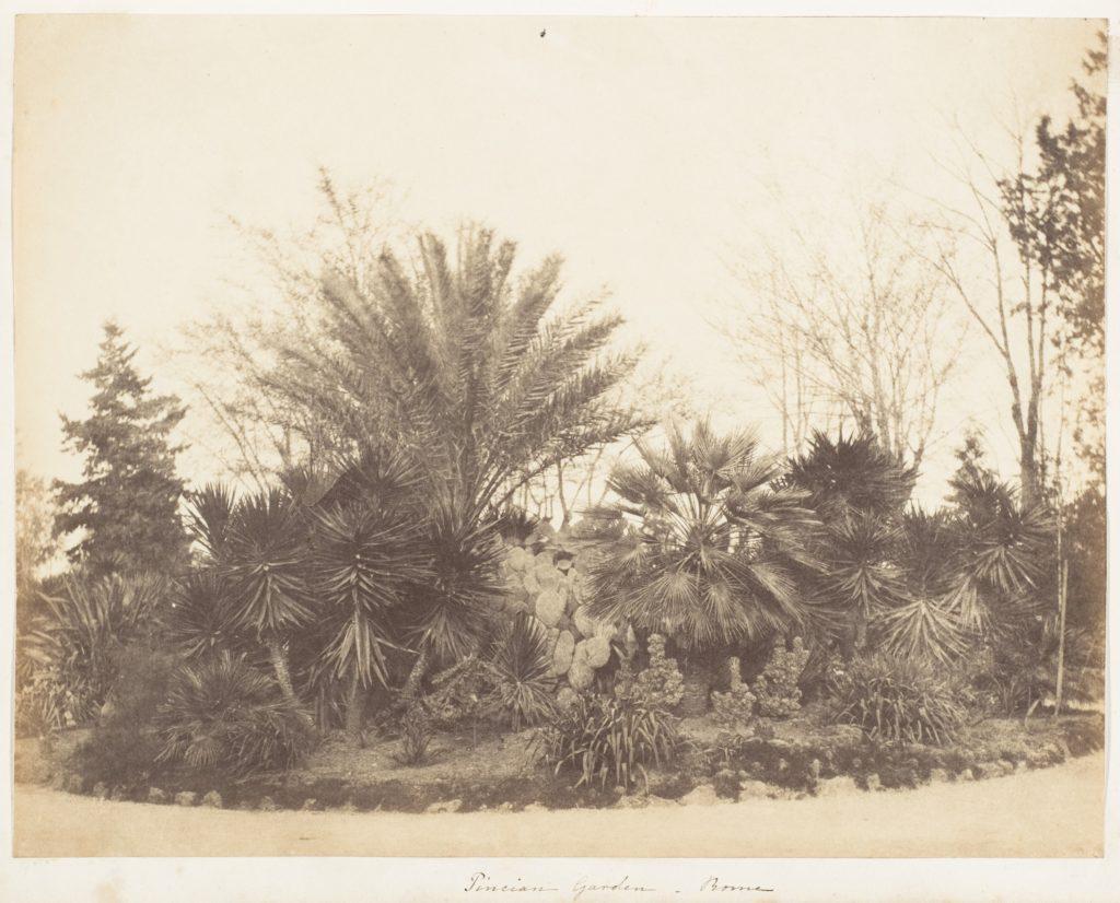 Pincian Garden, Rome
