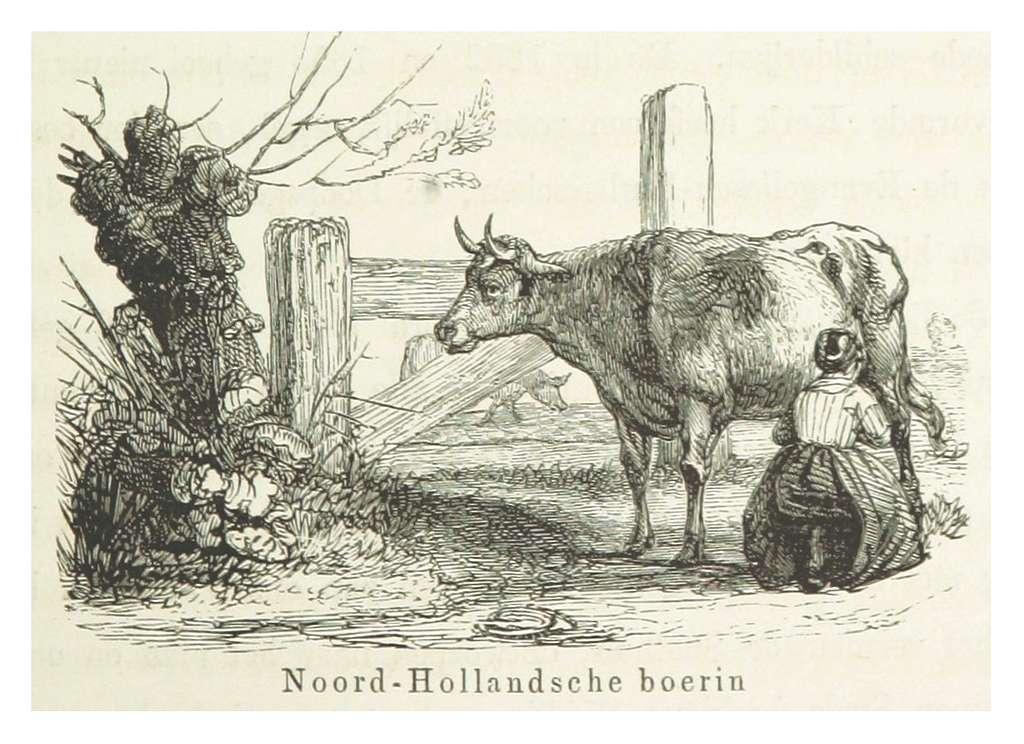 AA(1855) p243 Noord-Hollandsche boerin