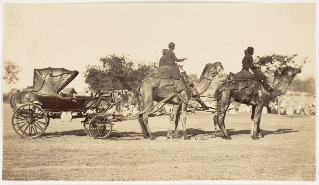[ A Travelling Camel Carriage from Lahore to Peshawar, Governor General's Camp]