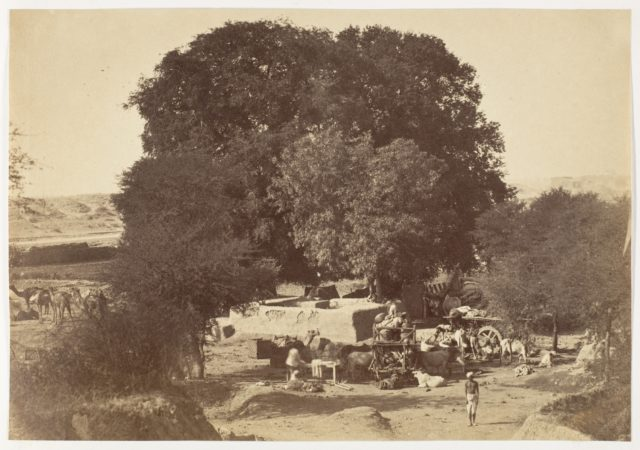 [Bhowlie- A Well in the Punjab]