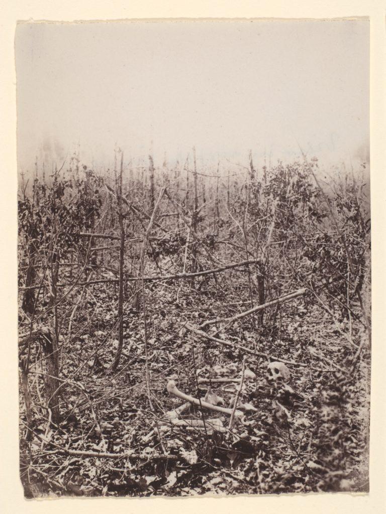 The Wilderness Battlefield