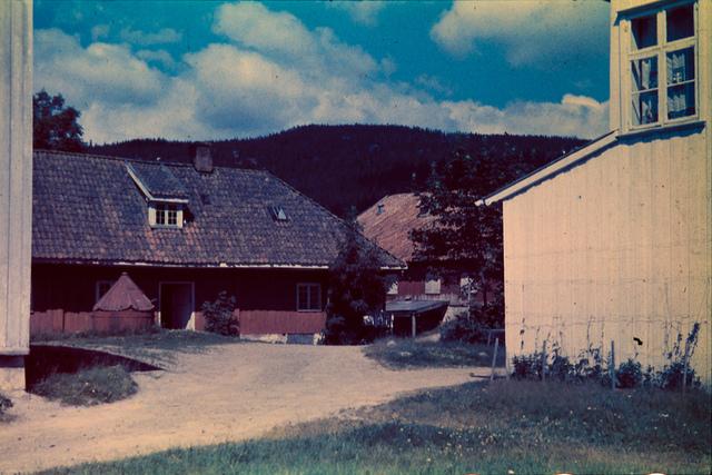 Gårdstun, Voksen gård