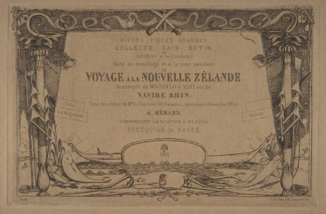 Cover: The Voyage to New Zealand (1842 - 46)