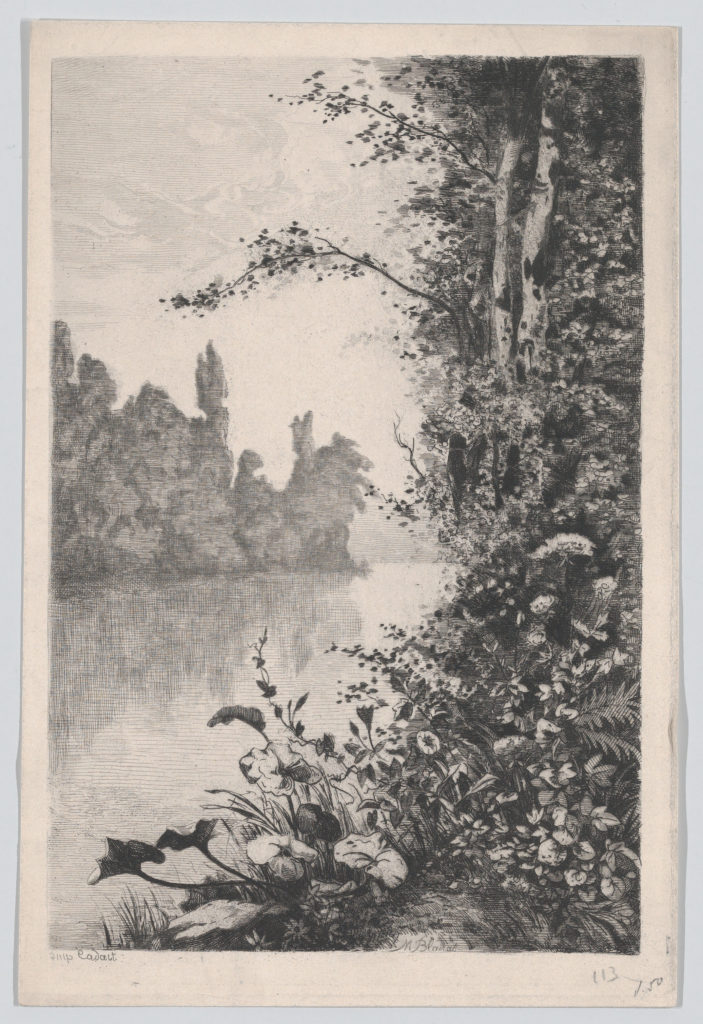 View of Flowers and Trees along a River Bank