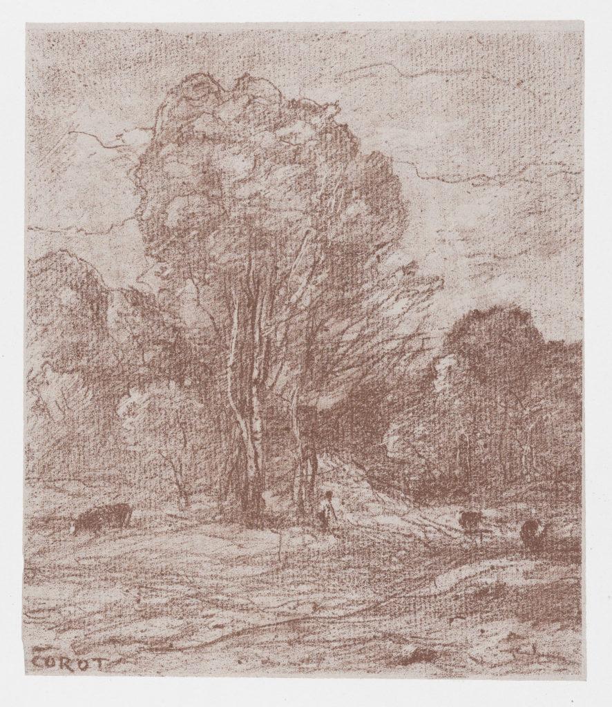 The Cows' Resting Place (Le Dormoir des vâches)
