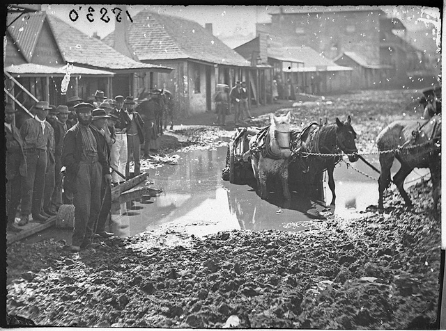 Horse and cart bogged in what was originally a gold digging outside Meares flooded Criterion Store, Clarke Street, Hill End, Winter 1872, by American & Australasian Photographic Company