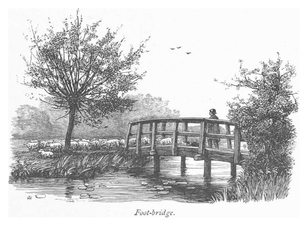 RO(1875) P159 FOOT-BRIDGE