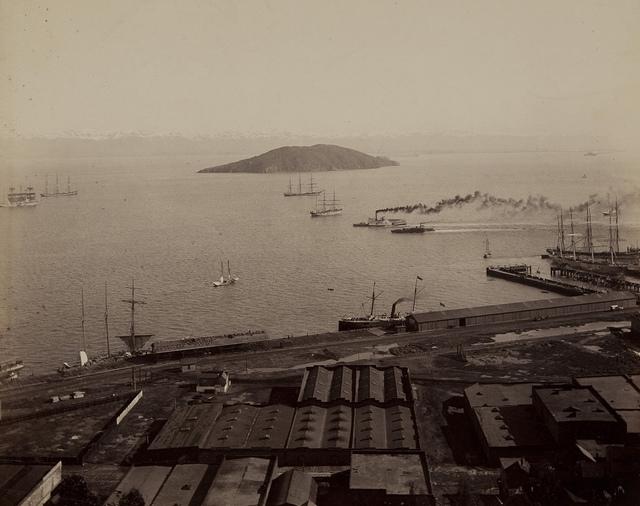Alcatraz from California Street