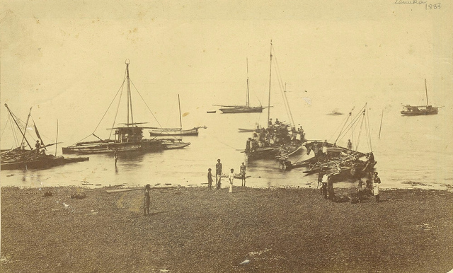 Levuka, Fiji, ca. 1883 / photographer unknown