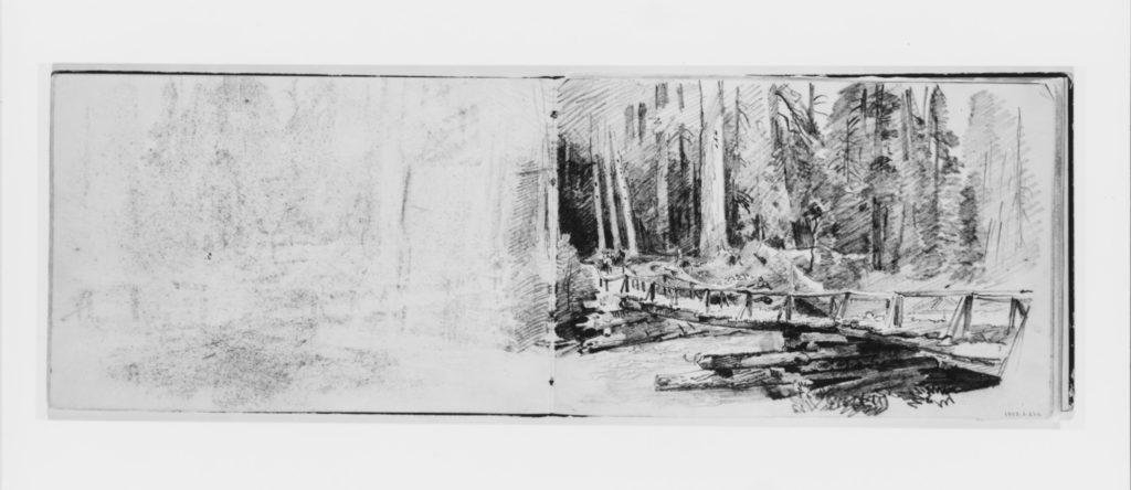 Footbridge in Forest (from Sketchbook X)
