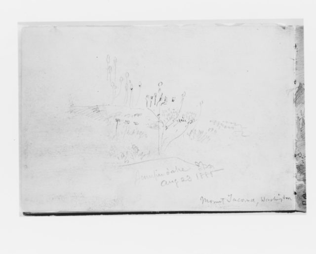 Juniper Lake Aug 23 1885, Mount Tacoma Washington (from Sketchbook X)