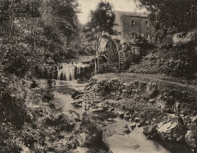 Rigg Mill, Whitby