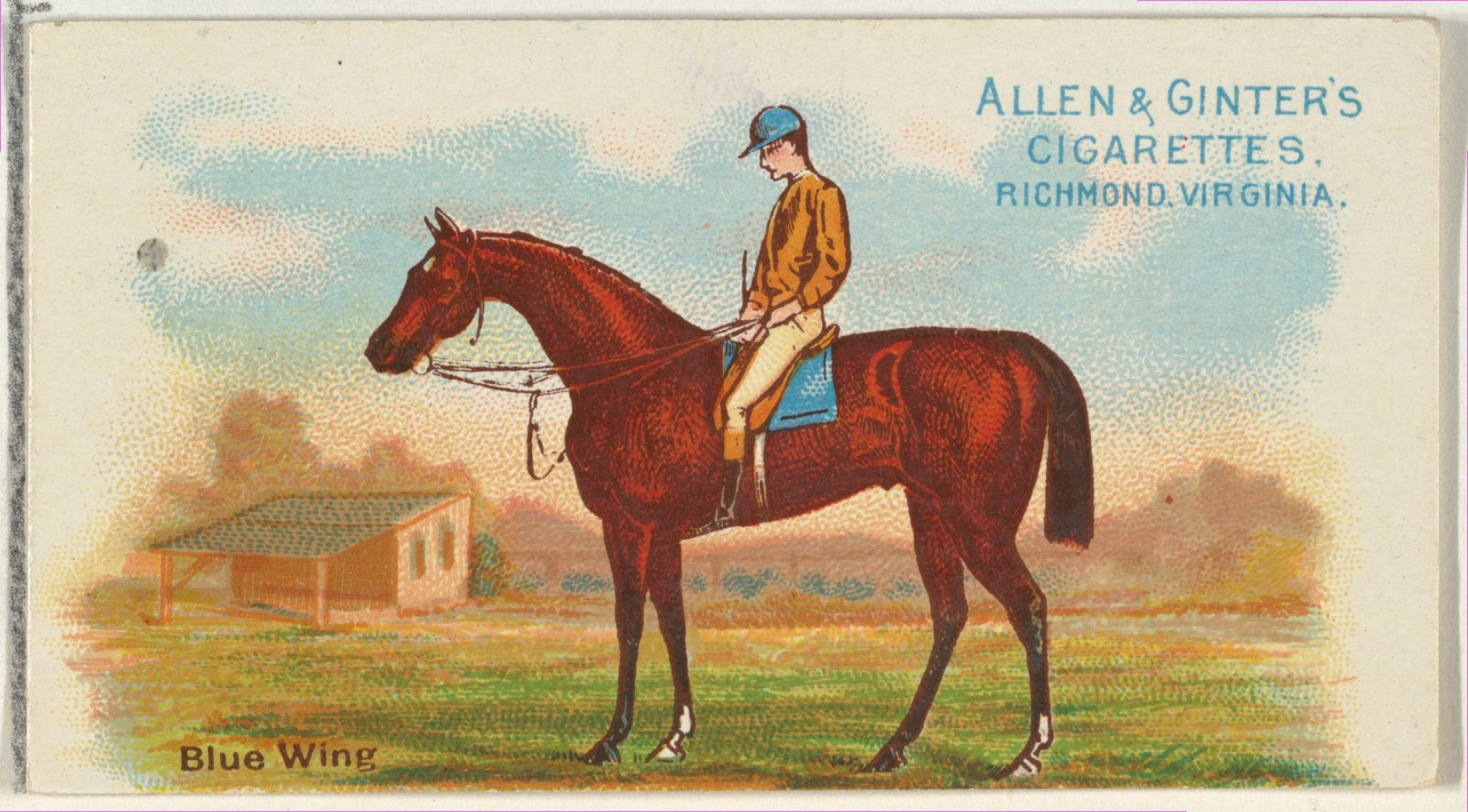 Blue Wing, from The World's Racers series (N32) for Allen & Ginter Cigarettes