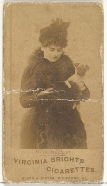 Miss Willett, from the Actors and Actresses series (N45, Type 1) for Virginia Brights Cigarettes