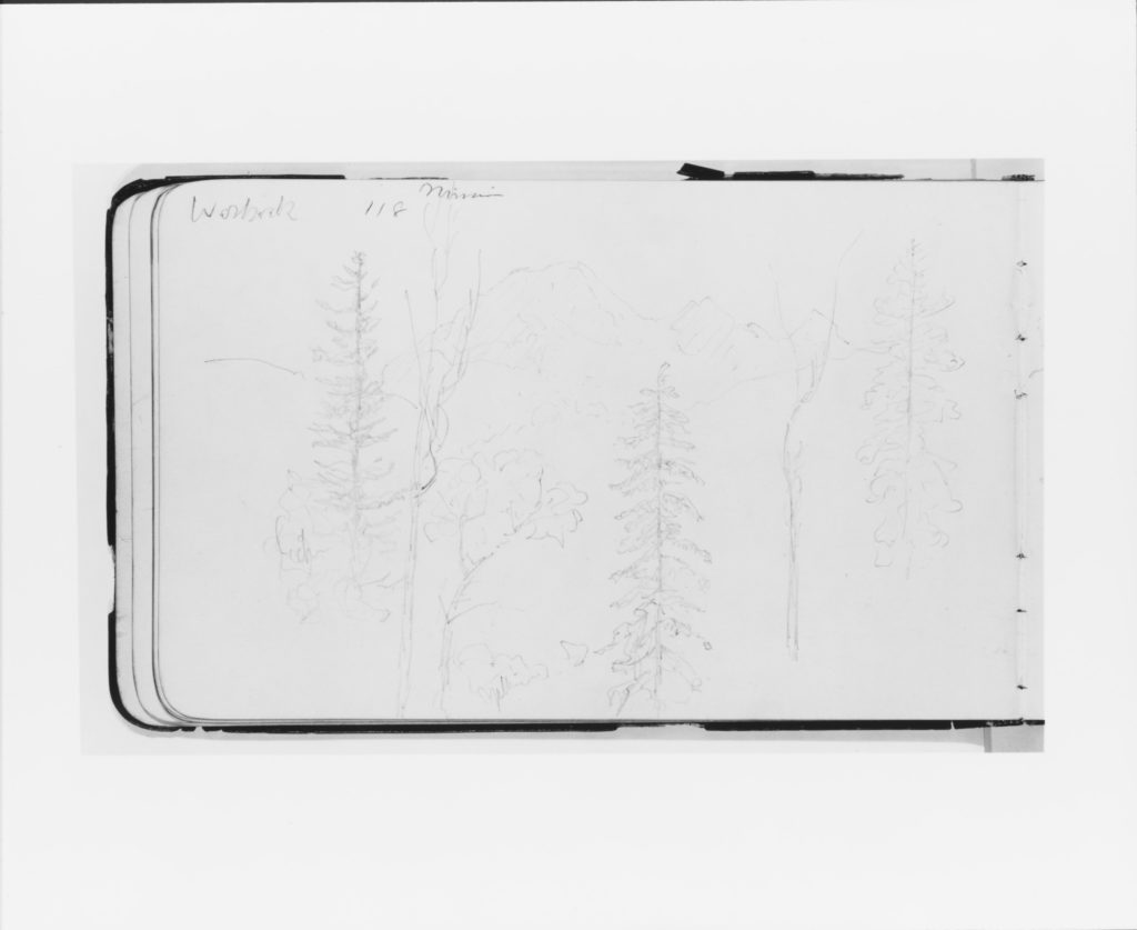 Mission (Warnock?): Landscape with Mountains and Foreground Trees (from Sketchbook)