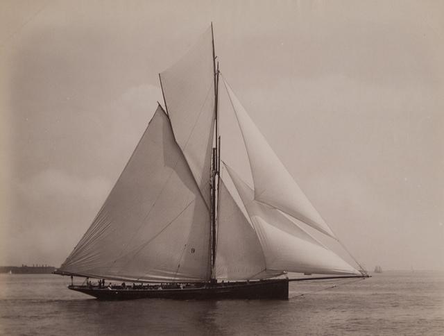 Galatea 232