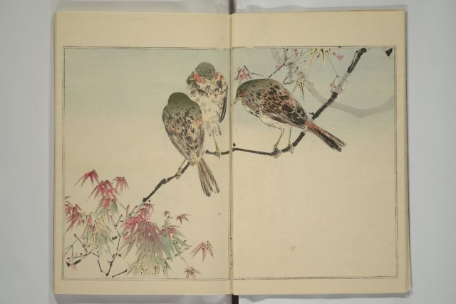 Picture Album of Birds and Flowers (Kachō gafu)