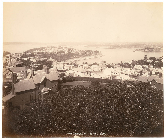 City of Sydney, N.S.W. from Fred Hardie - Photographs of Sydney, Newcastle, New South Wales and Aboriginals for George Washington Wilson & Co., 1892-1893