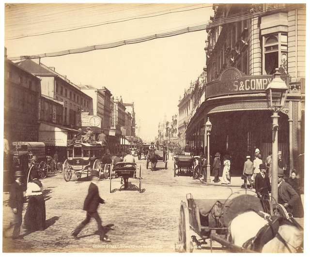 George St, Sydney from Fred Hardie - Photographs of Sydney, Newcastle, New South Wales and Aboriginals for George Washington Wilson & Co., 1892-1893