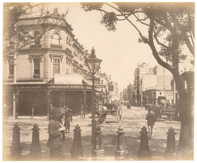 Market St, Sydney from Fred Hardie - Photographs of Sydney, Newcastle, New South Wales and Aboriginals for George Washington Wilson & Co., 1892-1893
