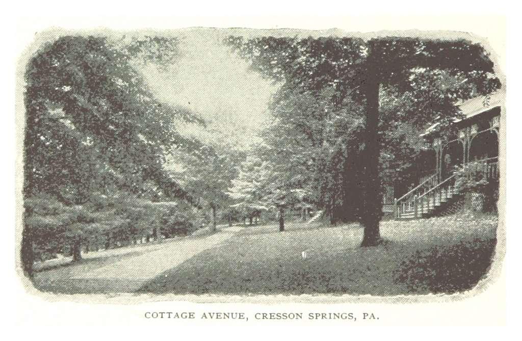 PRR(1893) p068 CRESSON SPRINGS, PA - AVENUE