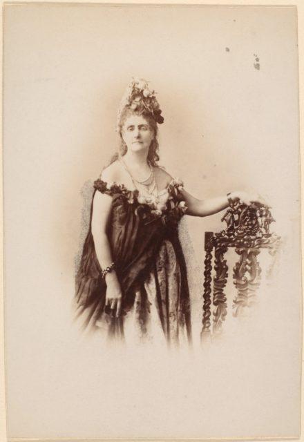 Roses Compiègne