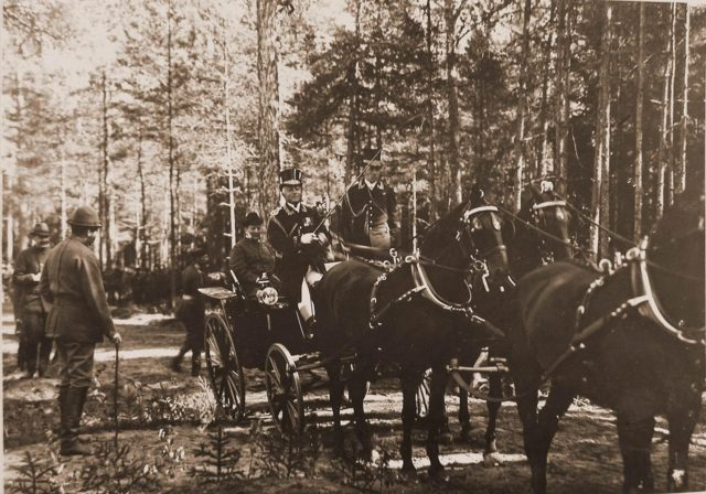 Grand Duke Vladimir Alexandrovich in a carriage. Belovezh.