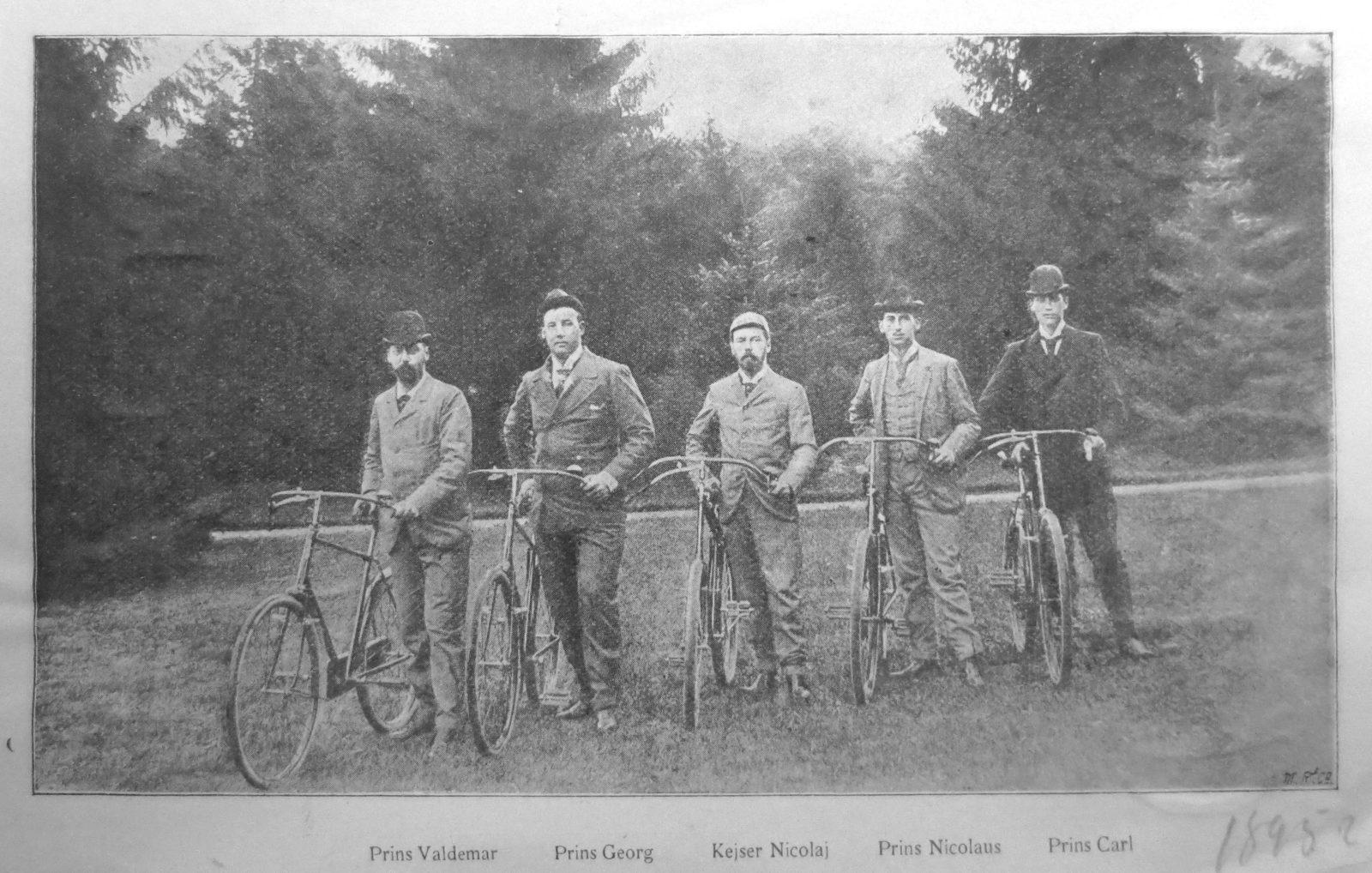 Royals 1895 - Princes Valdemar, Georg, Nicolaj, Nicolaus, Carl