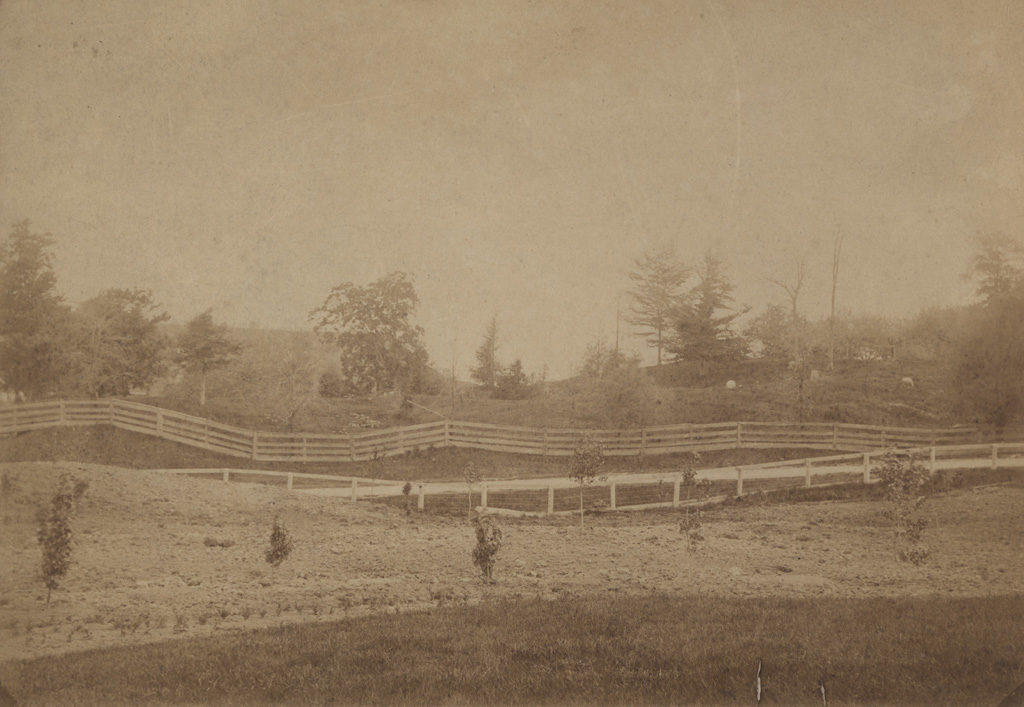 Field of fences, date unknown