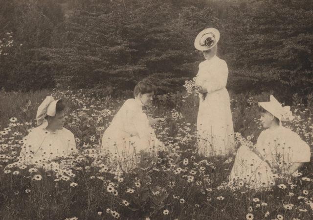 Four women in field of flowers, date unknown