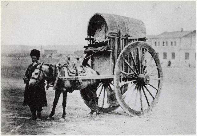 Local resident and his carriage, Baku