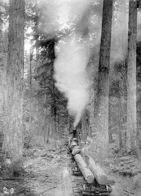 Locomotive engine pushing railroad cars with logs