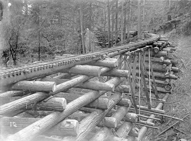 Log bridge (crib trestle) on the Columbia and Nehalem Valley Railroad, Columbia County, Oregon