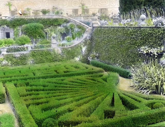 Palmieri, Firenze – Box garden  from level of tennis court