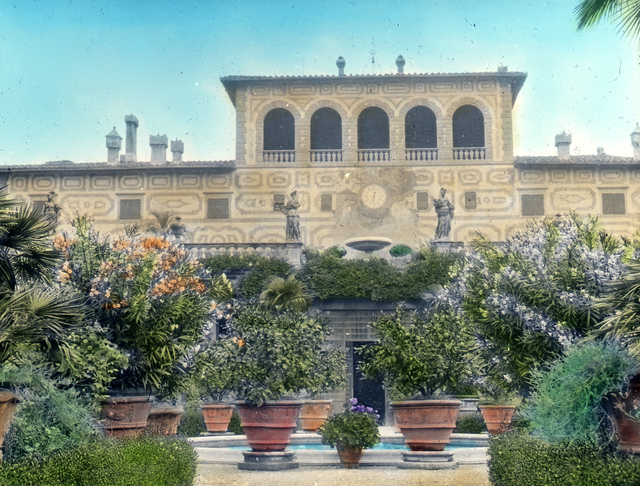 Palmieri, Firenze – terrace from garden – citrus & oleander
