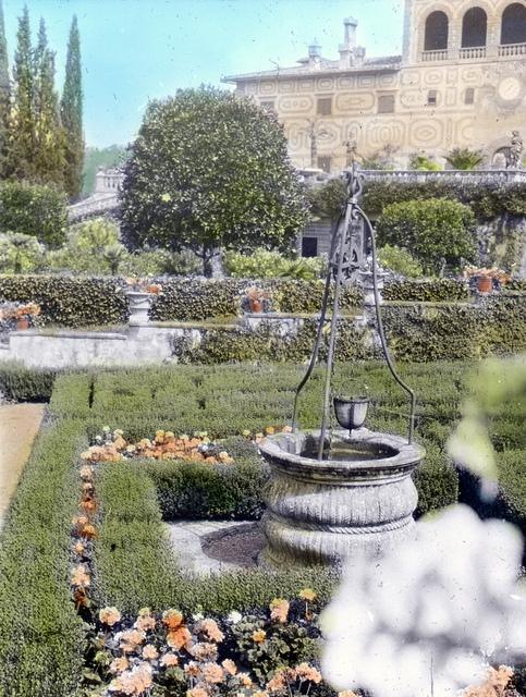 Palmieri, Firenze – Well head in box garden