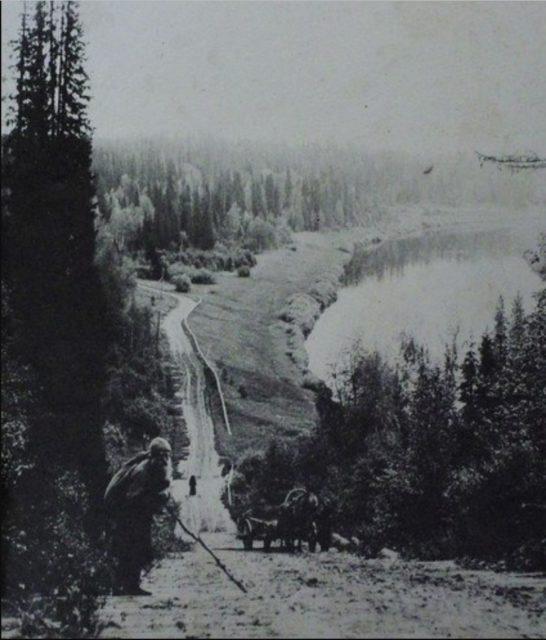 Pinega river