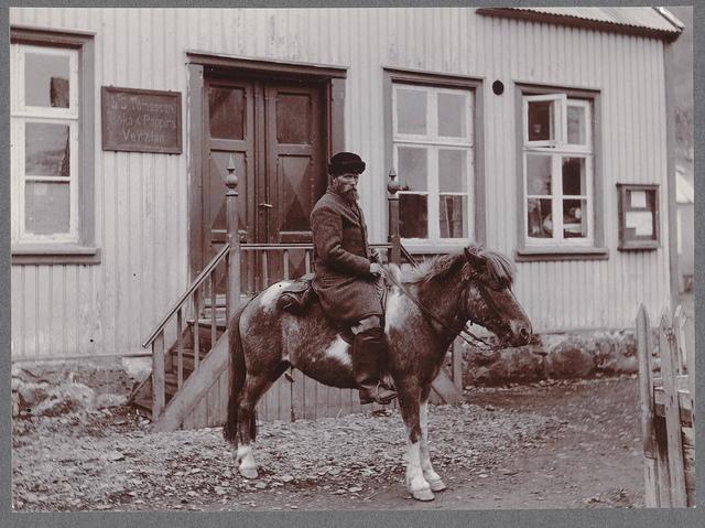 (Seyðisfjörður.) - An Icelander and his steed.