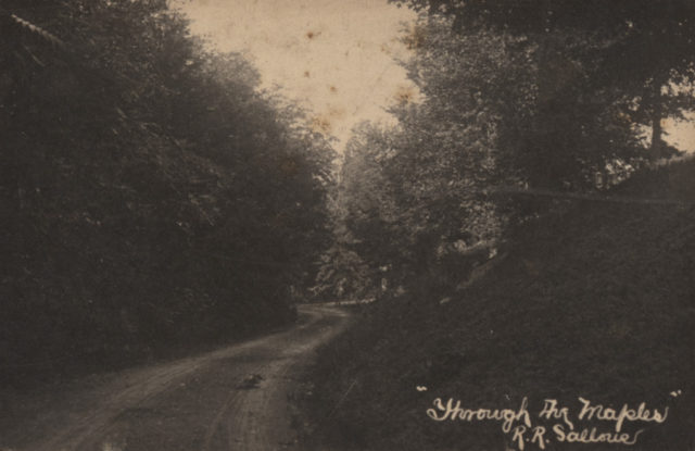 Through the maples, date unknown