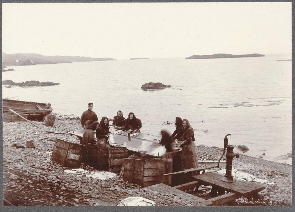 Vopnafjörður.  Fish washing.
