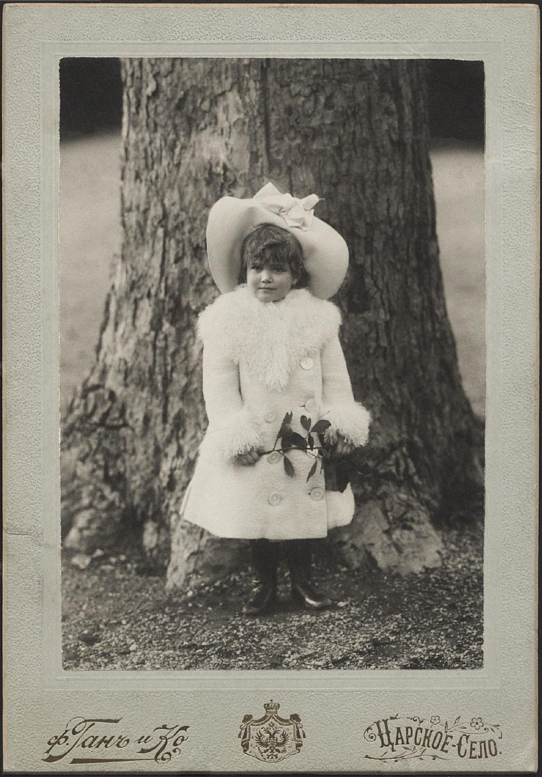 Grand Duchess Maria Nikolaevna. The third daughter of Emperor Nicholas II and Empress Alexandra Feodorovna. Tsarskoe Selo.