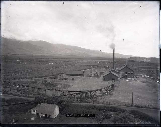 Wailuku Sugar Mill (1), photograph by Brother Bertram