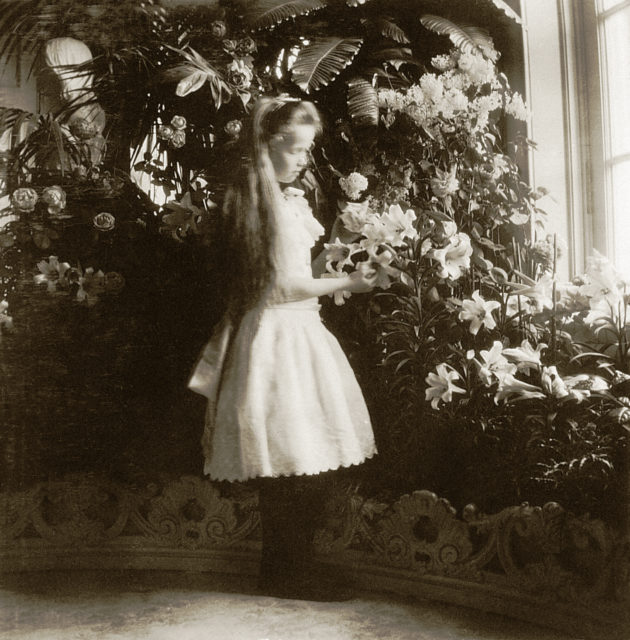 Grand Duchess Olga Nikolaevna. The first daughter of Emperor Nicholas II and Empress Alexandra Feodorovna. At home. Photo of 1906.