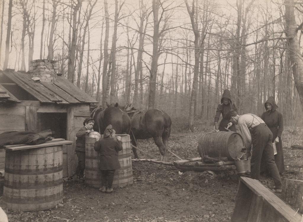 Разгрузка сока, 1907 год