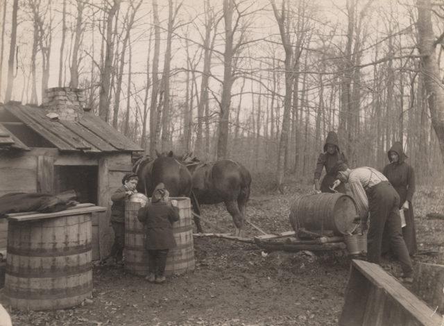 Unloading sap, 1907