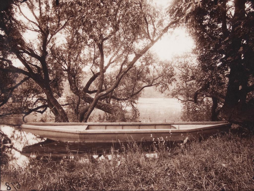 #678 - Etang de Corot, Ville d'Avray