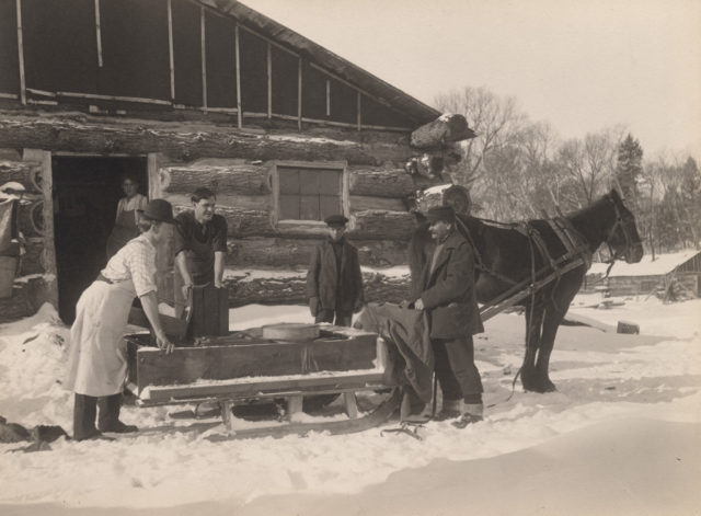 Loading the chuck sleighs, 1909