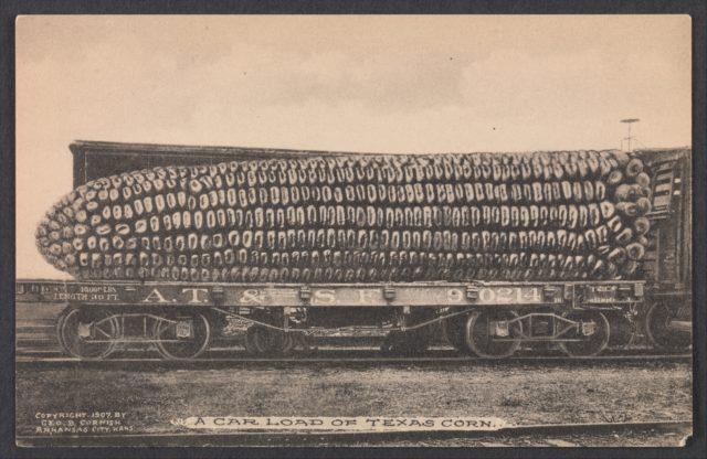 A Car Load of Texas Corn