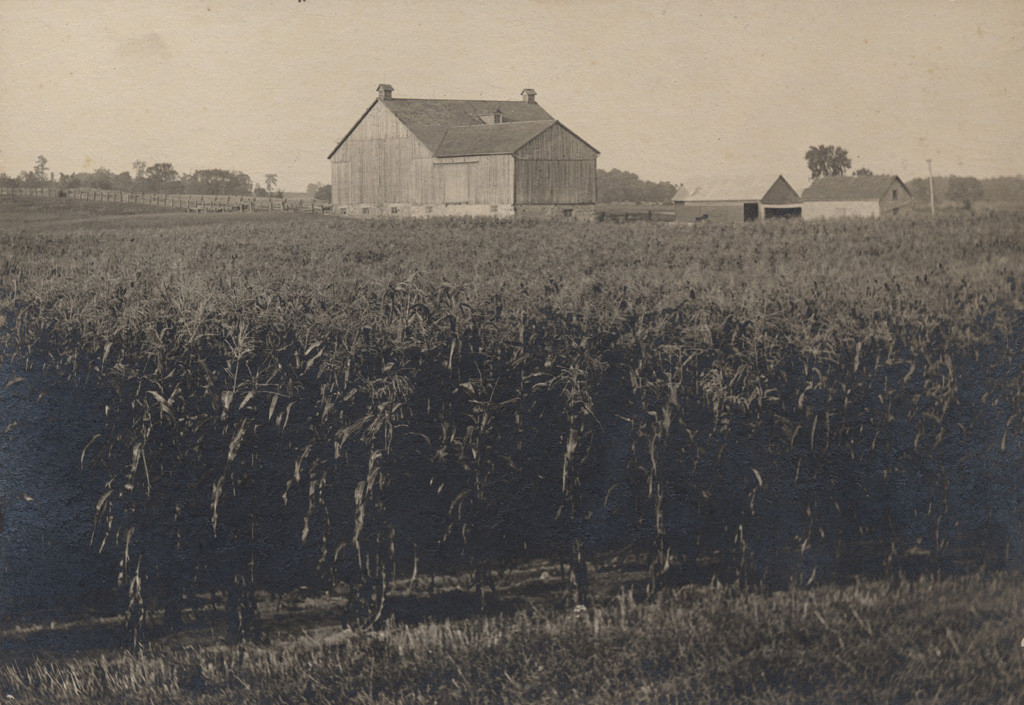 Corn field with barn, date unknown