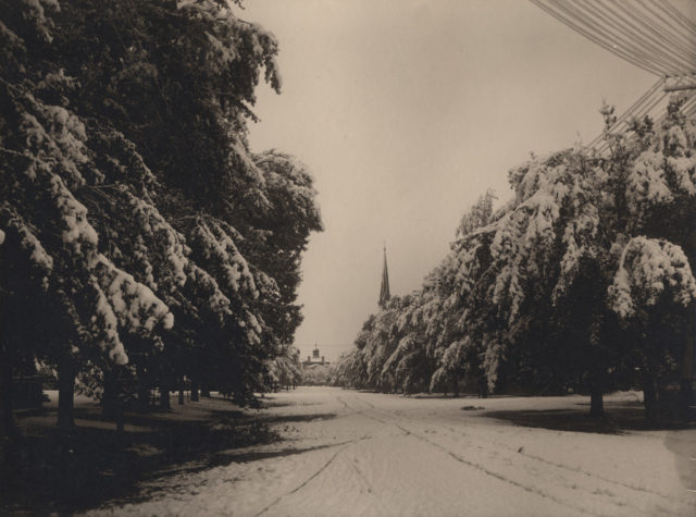 Late snowstorm, date unknown